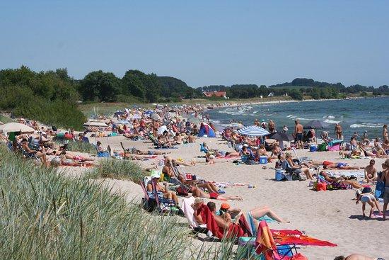 Пляжи Швеции